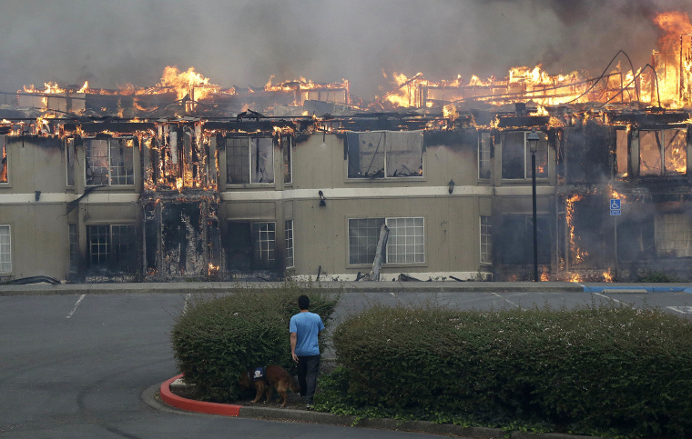 Image: Rudy Habibe, from Puerto Rico, and his service dog Maximus walk toward a burning building at the Hilton Sonoma Wine Country hotel