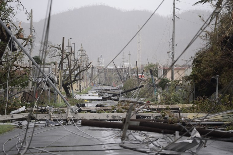 Image: Electricity poles and lines lay toppled on the road after Hurricane Maria hit the eastern region of Puerto Rico
