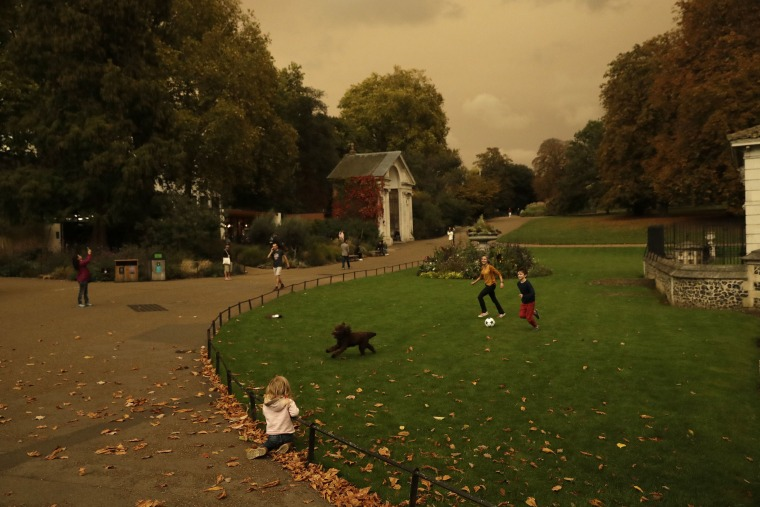 Image: Hyde Park is bathed in a dull sepia light from the sky in London