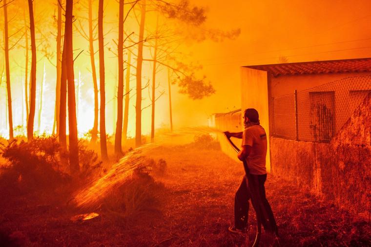 Image: Forest fire in Vieira de Leiria