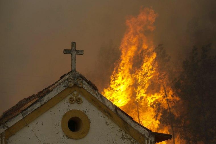 Image: Fire forest in Vila Nova de Poiares