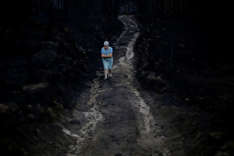 Image: A woman walks through the burnt forest in Vila Nova, near Vouzela