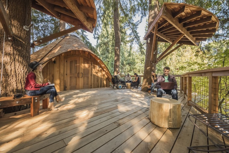 Microsoft Treehouse Meeting Space
