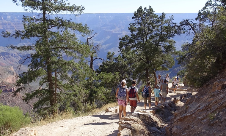Image: The crowded Bright Angel Trail