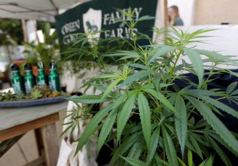"Image: Marijuana plants are displayed at the Green Goat Family Farms stand at ""The State of Cannabis"""