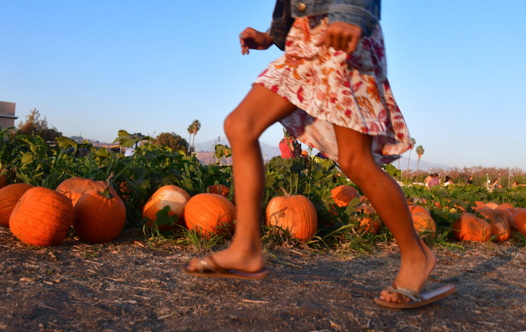 Image: A girl runs through a pumpkin patch in Pomona, California on Oct. 28.