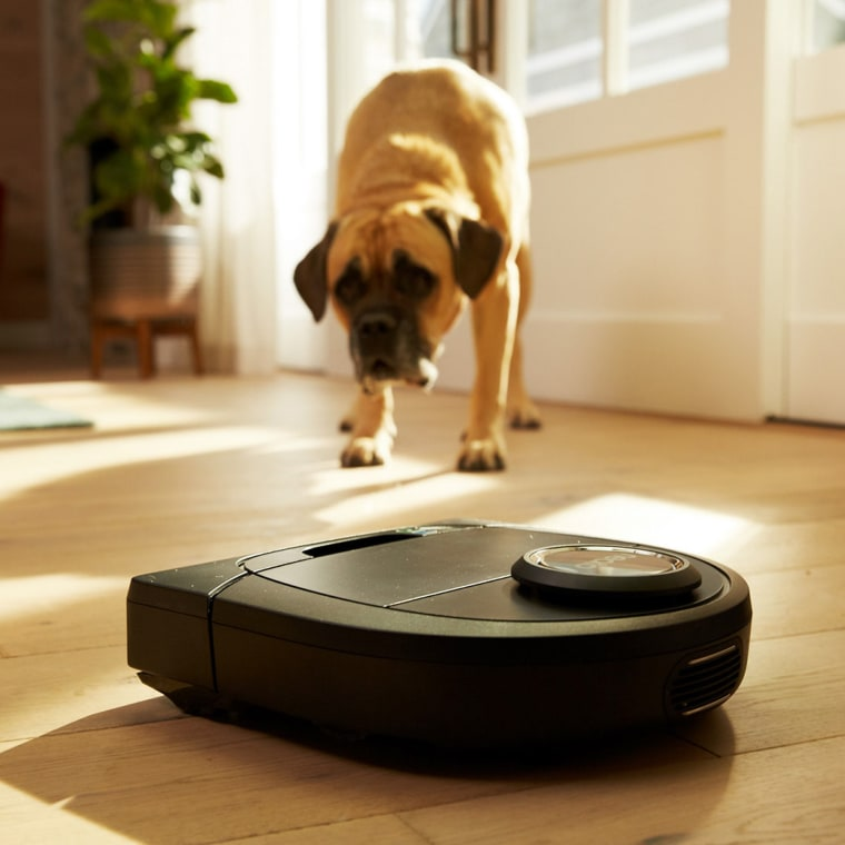 The Neato robotic vacuum gets to work via an app or Amazon's Alexa. And cats love to watch it.