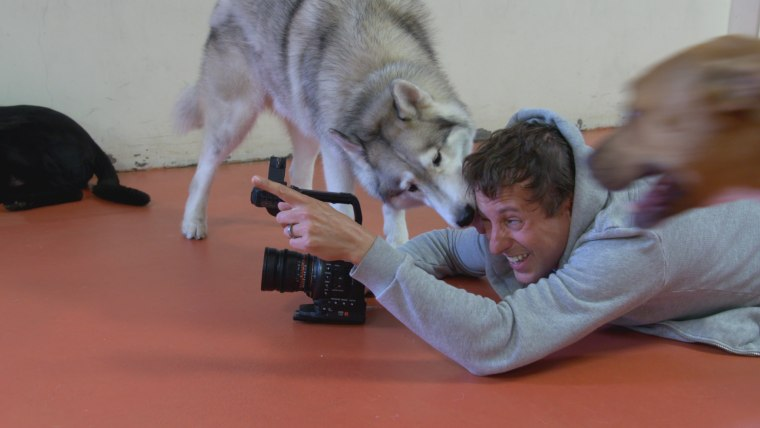 DogTV founder, Ron Levi, shoots material for his television station for dogs.