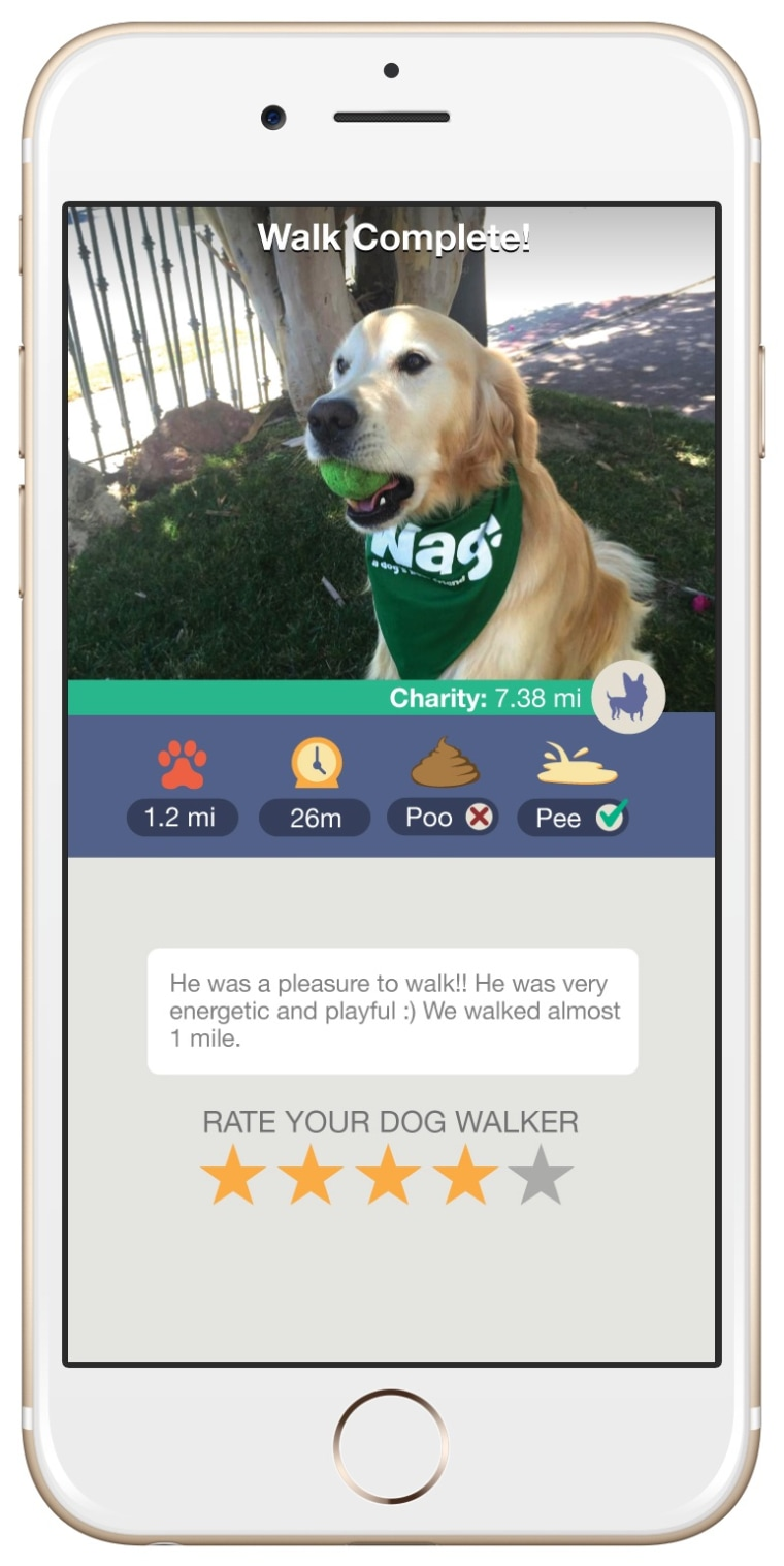 Wag! provides an activity report for customers after every walker is complete.