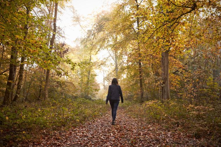 Woman Walking Along Path In Autumn Woodland