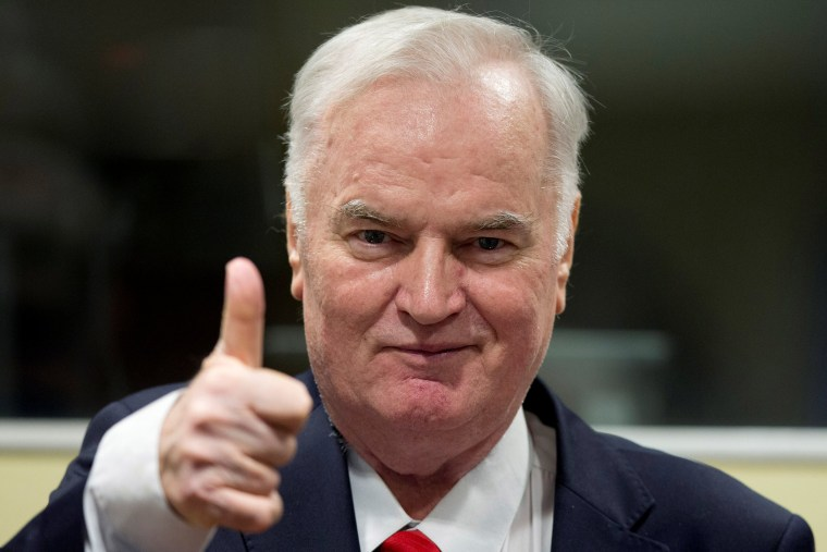 Image: Ex-Bosnian Serb wartime general Ratko Mladic