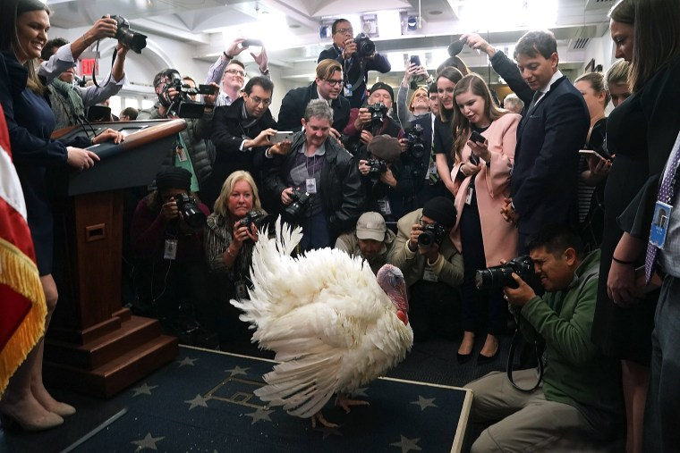 Image: BESTPIX - President Trump And First Lady Melania Hold National Thanksgiving Turkey Pardoning Ceremony