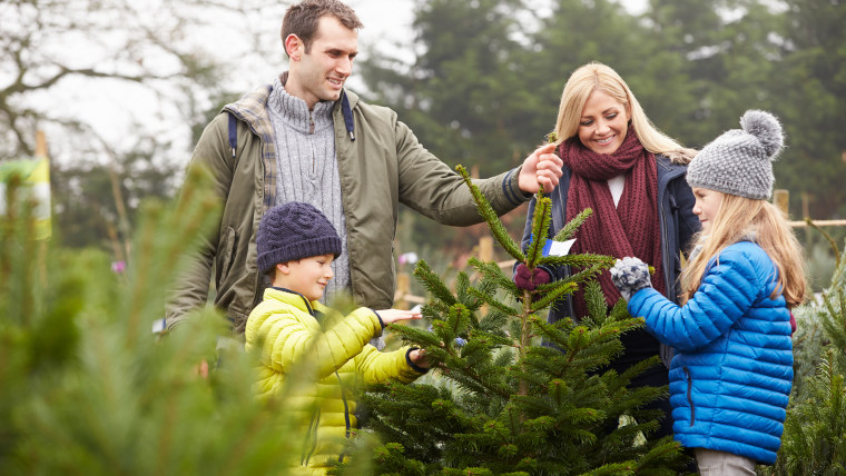 Your Christmas Tree Will Cost More This Year