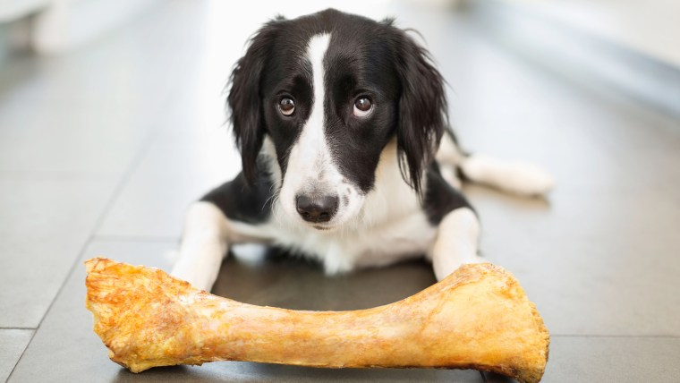 Some bone treats could kill your dog