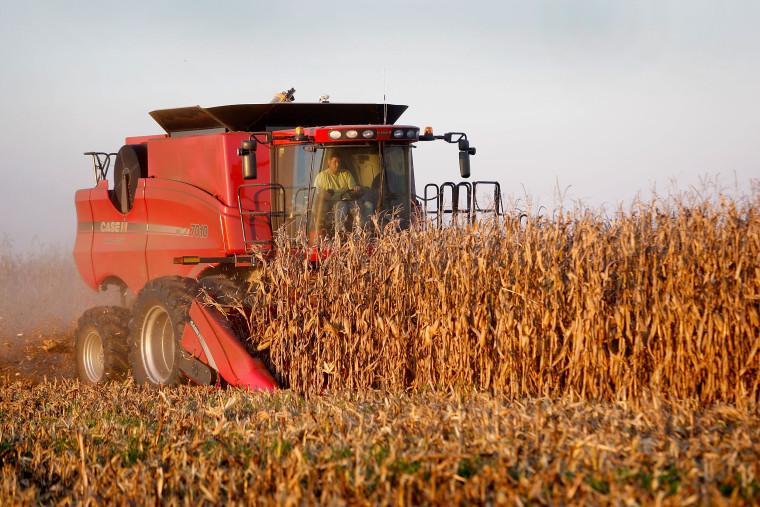 Image: The Heartland Enters Harvest Season