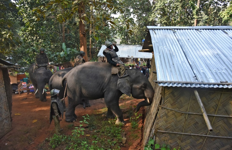 Image: Police guide elephants to demolish huts