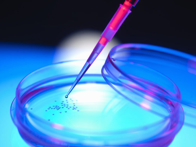 Liquid dropped onto cells in petri dish