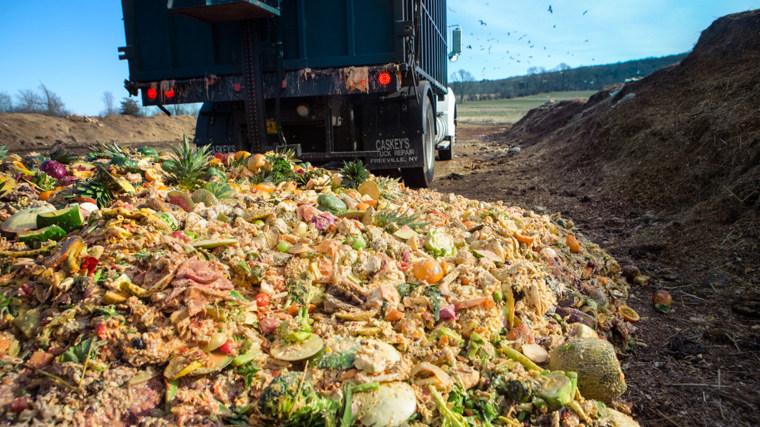 Image: Food Waste Compost