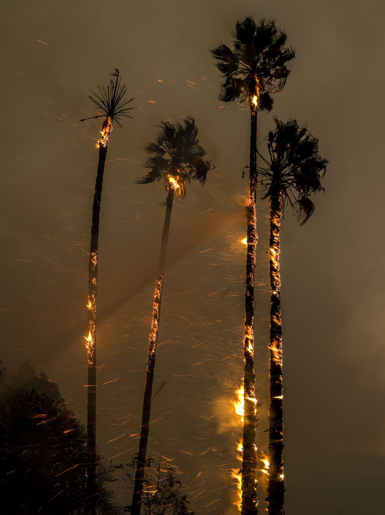 Image: Thomas fire burns in Ventura County, California