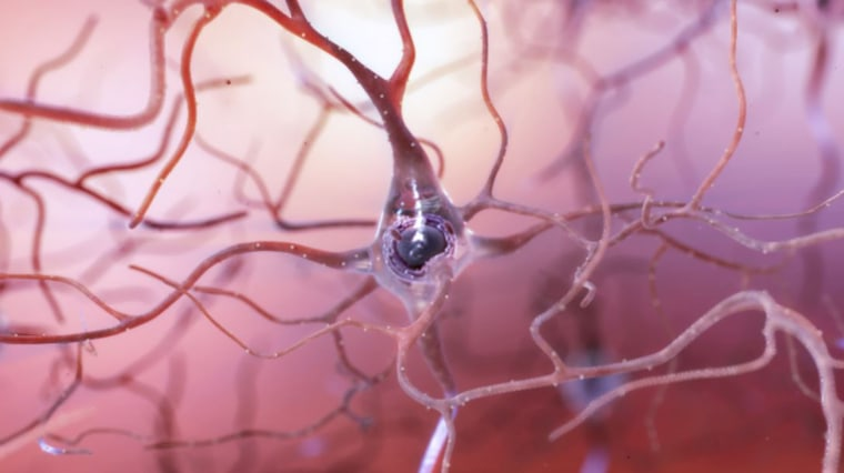 Image: Healthy Neuron