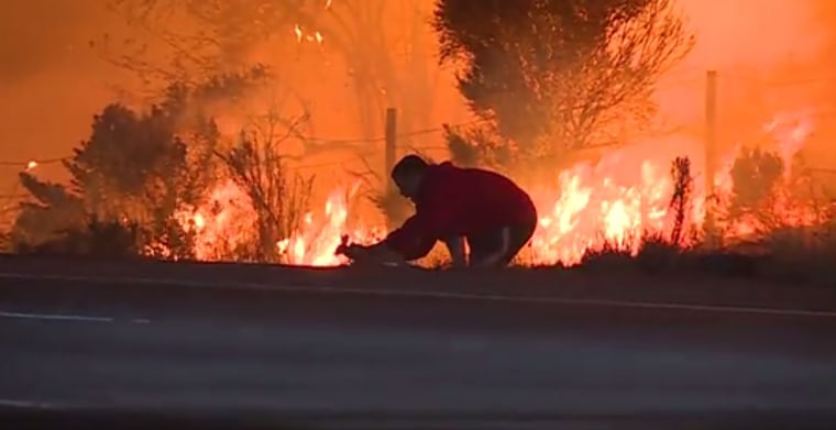 Image: A man pulled over on Highway 1 near La Conchita, California, to rescue a wild rabbit from the flames of the Thomas Fire.