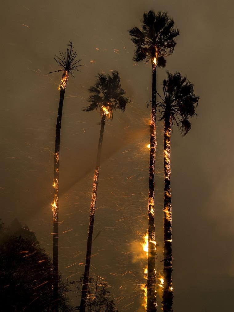 Image: Thomas fire burns in Ventura County, California