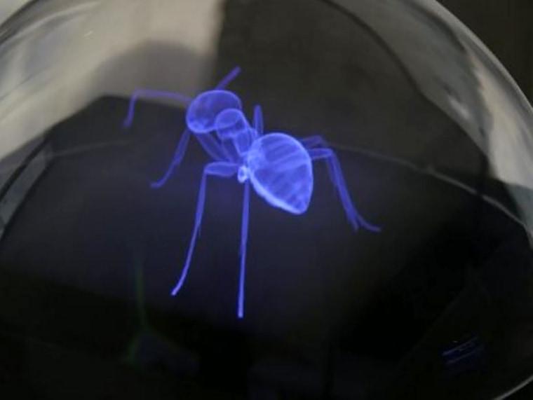 Image: Hologram