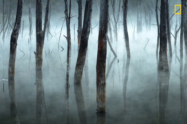 Image: Honorable Mention, Landscapes