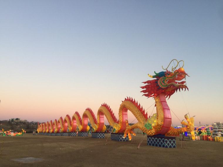 A 400-foot long dragon lantern lays across an open lawn at the Lantern Light Festival in Tulsa, Oklahoma.