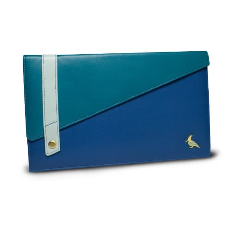 Document Case in blue