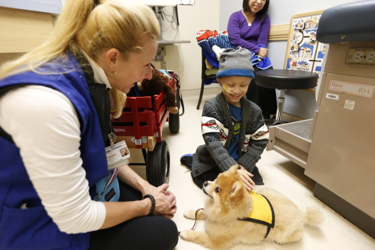 pediatric cancer patient with therapy dog