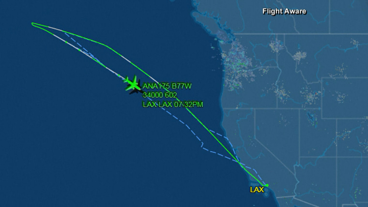 Plane en route to Tokyo turns around and goes back to LA