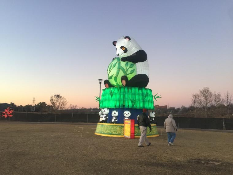 A panda lantern from a Lantern Light Festival in Tulsa, Oklahoma.