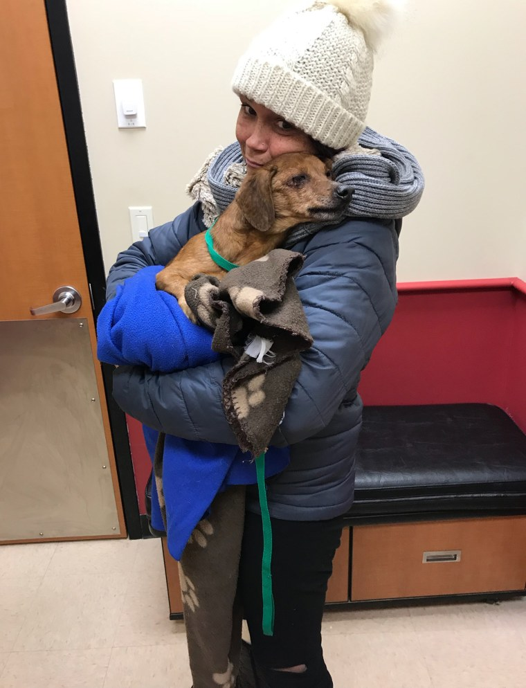 Dog left in bag on freezing day in Staten Island
