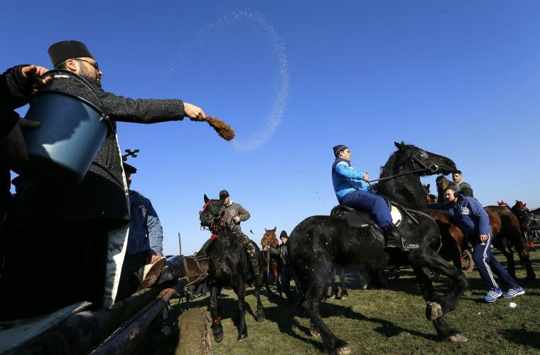 Image: Epiphany Horse Race