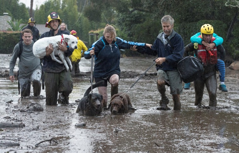 Image: Emergency personnel evacuate local residents and their dogs after a mudslide in Montecito