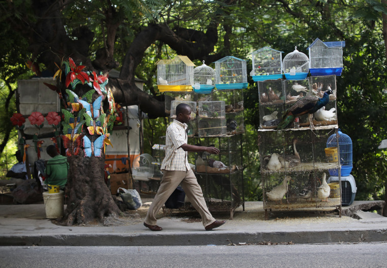 Image: A man walks past cages with animals for sale in Port-au-Prince