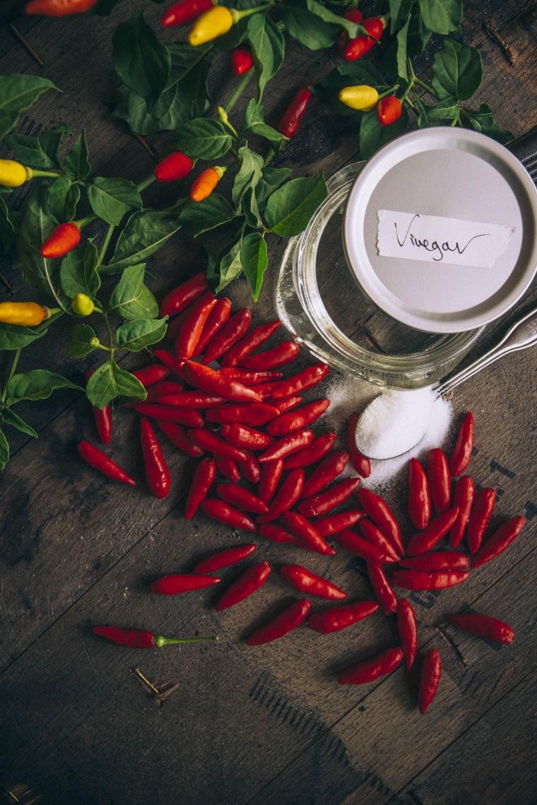 TABASCO Sauce ingredients