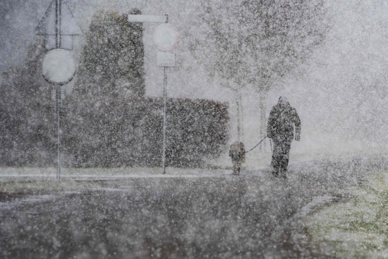 Image: A man walks his dog through heavy snowfall in Straubing