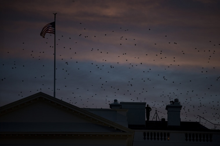Image: Night falls over the White House.