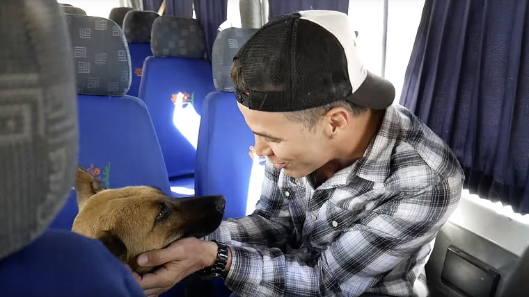 Steve-O rescues street dog in Peru