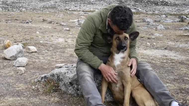 Steve-O rescues street dog in Peru