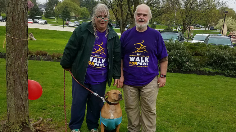 After a year of fostering Jingle, Anne and Vic Tenaglia shed about 80 pounds combined. Their anxious dog improved with frequent walks.
