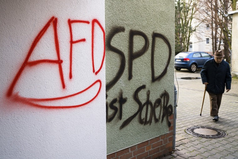 Image: AfD in Germany