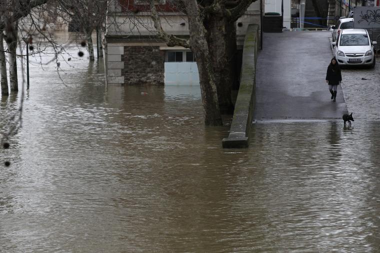 Image: River Seine Flood