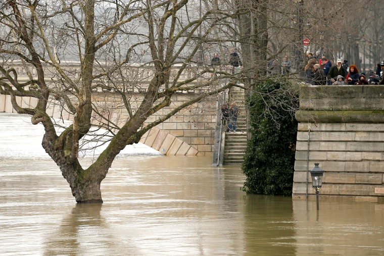 Image: A street lamp and a tree are seen on the flooded banks of the River Seine in Paris