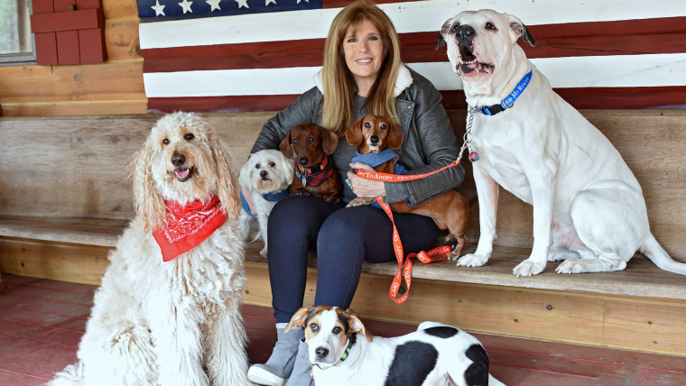 Jill Rappaport with her six rescued dogs