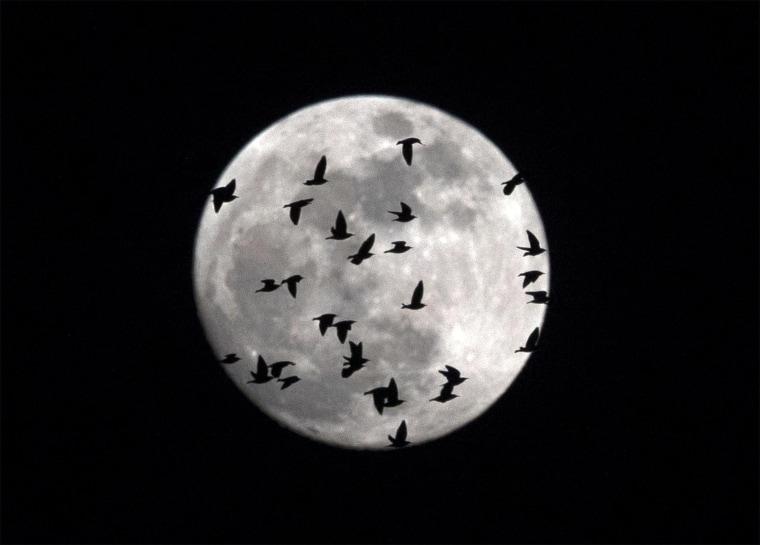 Image: Supermoon Eclipse