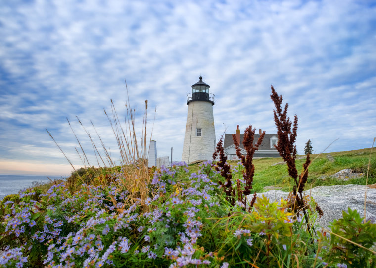 The lighthouse at Pemaquid Point, Maine with cloudy sky above and assorted native foliage in the foreground.