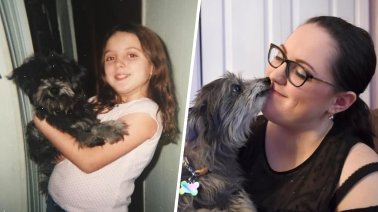 woman adopts dog her parents gave up to shelter a decade earlier